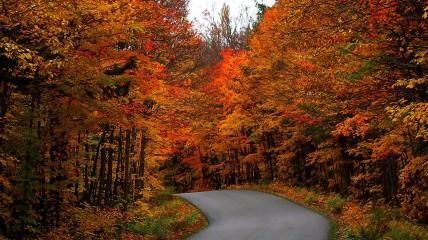 Canada-Fall