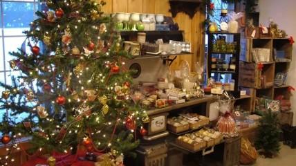 St Marys Christmas Joy