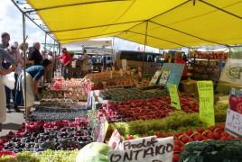 St. Jacobs Market