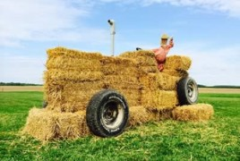 Amish Straw Sculpture Tour